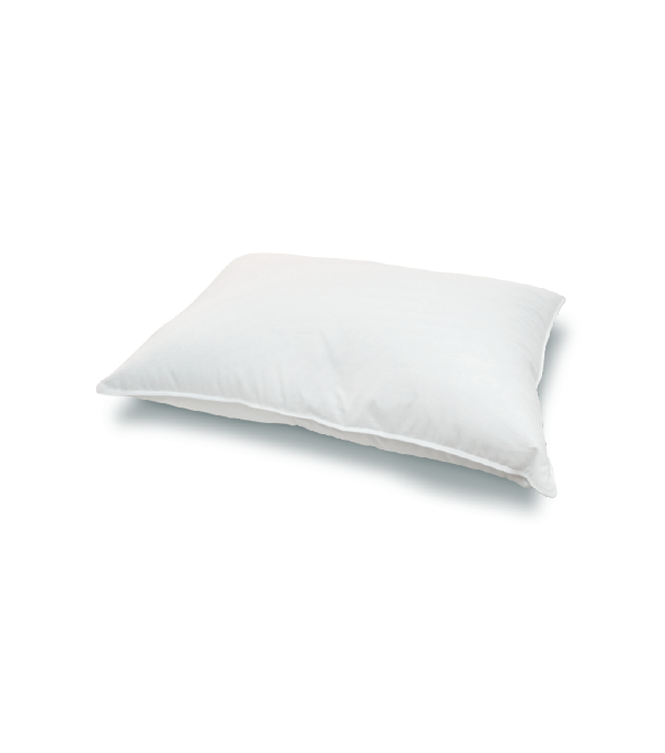 USA Down Pillow